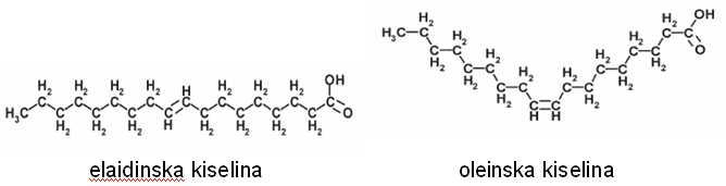 Prostorna struktura elaidinske i oleinske kiseline