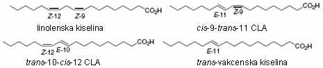 Struktura linolenske kiseline i sa njom povezanih  C-18 masnih kiselina