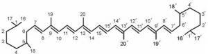 Osnovna struktura i numerisanje karotenoida