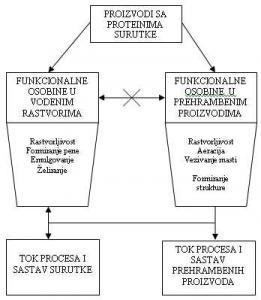 Funkcionalne osobine proizvoda sa proteinima surutke