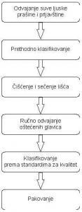 Šematski prikaz postupaka u separaciji glavica crnog luka