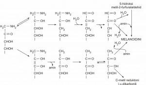Obrazovanje melanoidnih kopolimera