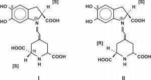 Opšta formula betacijanina (I – betanidin; II – izo-betanidin)