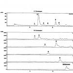 HPLC-UV hromatogram u ekstraktu kupine: 1. cijanidin-3-galaktozid; 2. cijanidin-3-glukozid; 3. cijanidin-3-arabinoza; 4. pelargonidin-3-glukozid; 5. cijanidin-3-ksiluloza; 6. malvidin-3-glukoza