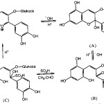 Reakcija cijanidin-3-glikozida sa NaHSO3  u baznoj i kiseloj sredini