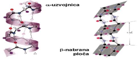 alfa-uzvojnica i beta-nabrane ravni