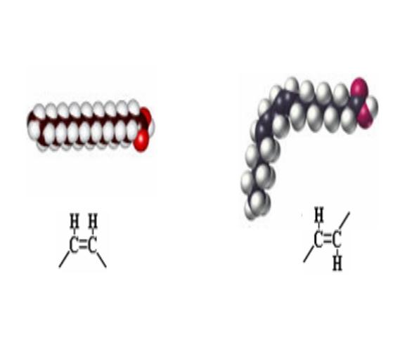 Cis (jestiva) i trans (štetne po zdravlje) konfiguracija masnih kiselina i njihovi segmenti