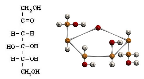 Fischer-ova i prostorna formula fruktoze
