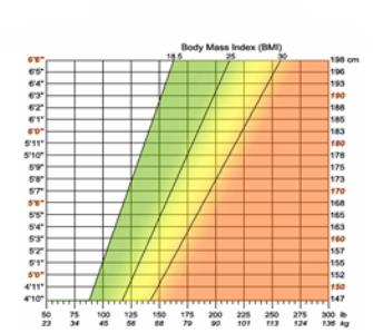 Matematičar Adolphe Quetelet i grafički prikaz BMI ili indeksa tjelesne mase (ITM)