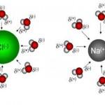 Koloidni ioni - Cl i Na i vezivanje vode