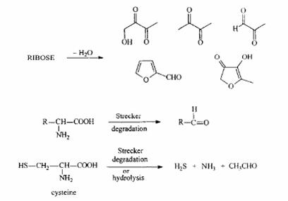 Neki važni međuproizvodi aroma u Majlardovoj reakciji