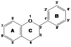 Struktura flavonoida