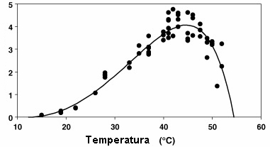 Uticaj temperature na rast C. Perfringens