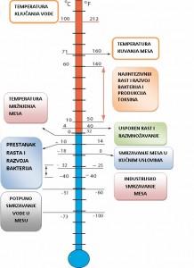 Uticaj temperature na mikroorganizme i procese koji se dešavaju u mesu