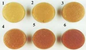 JPCS (Nakai i sar., 1975) standard za boju svinjskog mesa