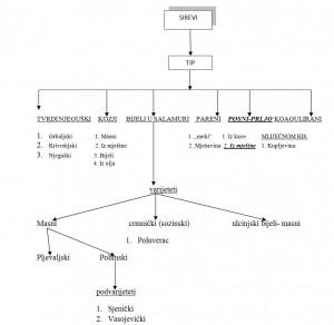 Šema 2. Klasifikacija crnogorskih sireva