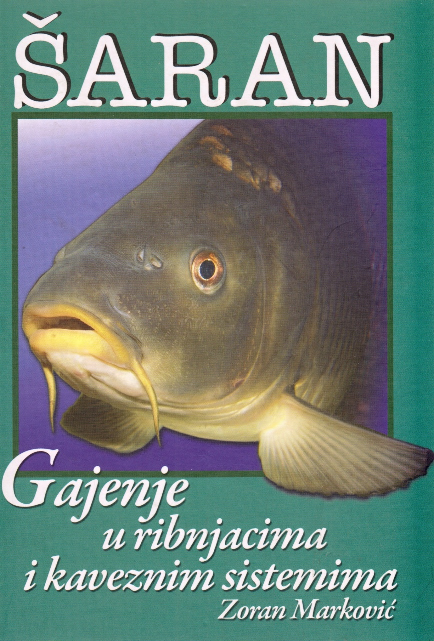 Šaran - gajenje u ribjnacima i kaveznim sistemima